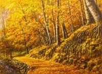 Лес в осенних красках