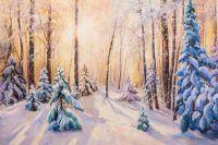 Солнце в зимнем лесу
