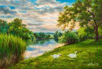 Лебеди на берегу реки