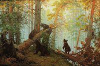 Утро в сосновом лесу.Копия
