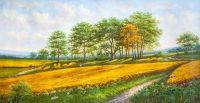 Пшеничное поле. Август