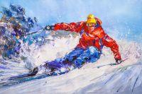 Горные лыжи N2