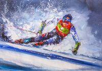 Горные лыжи N3