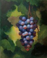 Виноград в саду. Синий виноград