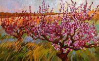 Персиковая весна