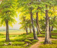 Летним днём на окраине леса