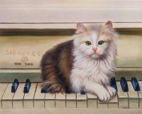 Котёнок-пианист