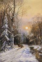 По зимней дороге вдоль незамерзающего ручья N3
