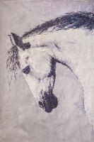 Конь с чёрной гривой